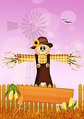 scarecrow in the fields
