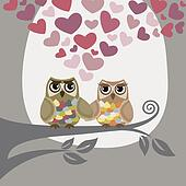 Love is in the air for two owls