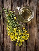 flowering barbarea vulgaris - Rape