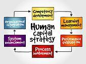Human capital strategy mind map