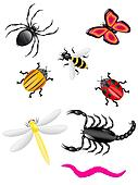 beetles and insects colors