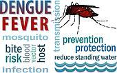 Dengue Fever Word Cloud