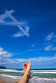 Lying on the beach with dollar symbol cloud