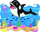 Killer whale carton