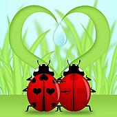 Ladybug Couple Under Heart Shape Grass