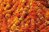 Flower Chains India