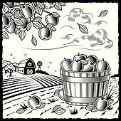 Landscape with apple harvest black