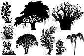 African trees - vector