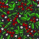 flower, wild strawberry on a dark background