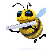 3d Bee measures up