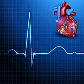 Human heart rhythm on a beautiful blue background with light shades