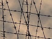 Barbed wire fence for texture