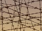 barbed wire fence illustration