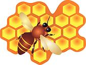 A bee filling the hive cells Vector