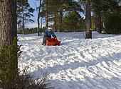 Child with sled outside in the forest