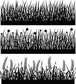 Grass Plant Flower Silhouette