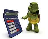 tortoise with a calculator