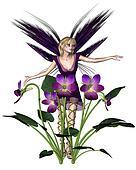 Spring Violet Fairy