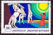 Canceled Mongolian Postage Stamp Standing Rearing Horses Performing, Circus Trainer