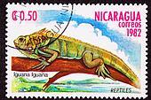 Canceled Nicaraguan Postage Stamp Green Iguana Lizard Branch Mar