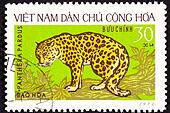 Leopard, Panthera Pardus, on a tree branch.  North Vietnamese stamp.