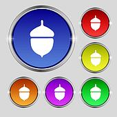 Acorn icon sign. Round symbol on bright colourful buttons.