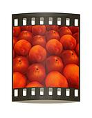 lots of fresh peaches are beautiful peach background. The film strip