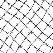 fence from barbed wires