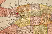 Buffalo on a vintage map
