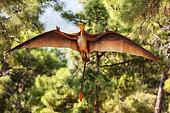 Pterodactyl dinosaur flying at forest