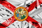 Florida State Flag on cannabis background. Drug policy. Legalization of marijuana