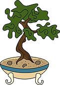 japanese style bonsai