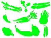 Vegetable silhouette