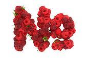 Raspberry symbol on white background