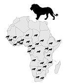 Distribution lion
