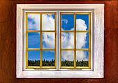 View through a window of a big cumulus cloud and a tree line