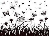 butterflies, flowers and grass