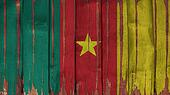 Cameroon Flag tinted vertical on the wood texture