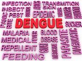 3d image Dengue concept word cloud background