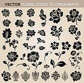 Vector Floral Ornament Set