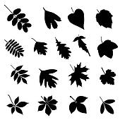 Set of leaf silhouettes