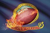 American football ball with flag on backround series - Idaho