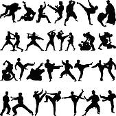 Various positions of martial arts