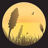 Orange sky with barley silhouette
