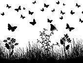 butterflies, flowers and grass background
