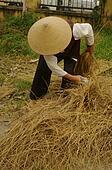 Woman sorting rice straw links