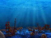 underwater plant life