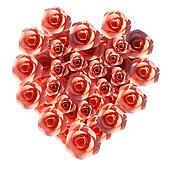 Heart Roses Means Valentine Day And Flora