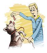 husky dog and sausage