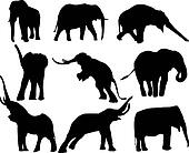 vector silhouettes of elephants